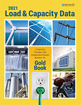 2021 Load and Capacity Data Report (Gold Book)