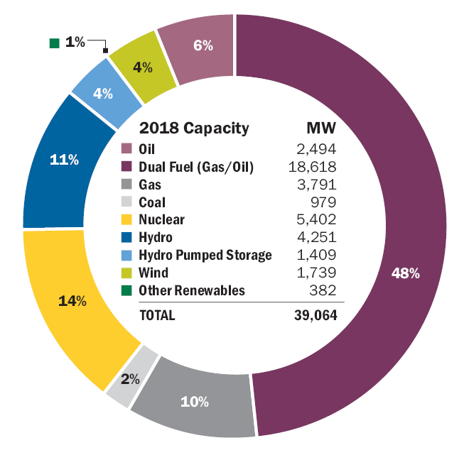 Fuel Mix – Generating Capacity: NY Statewide Generating Capacity by Fuel Source 2018